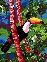 Coco le Toucan, canevas Margot de Paris